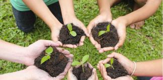 Veritas Ecological Challenge